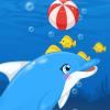 Dolphin Show Aquarium